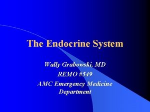 The Endocrine System Wally Grabowski MD REMO 549