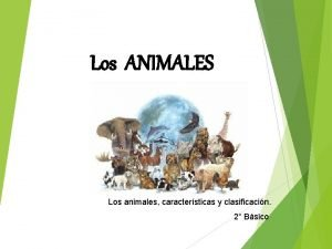 Los ANIMALES Los animales caractersticas y clasificacin 2