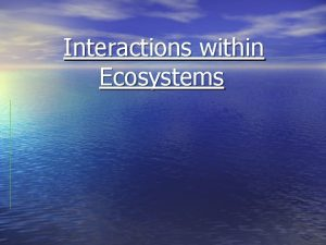 Interactions within Ecosystems What is an Ecosystem A