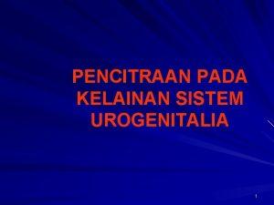 PENCITRAAN PADA KELAINAN SISTEM UROGENITALIA 1 INDIKASI Hematuri