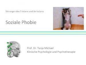 Strungen des Erlebens und Verhaltens Soziale Phobie Prof