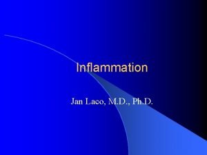Inflammation Jan Laco M D Ph D Inflammation