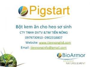 Pigstart Bt kem n cho heo s sinh
