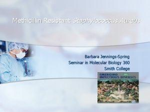 Methicillin Resistant Staphylococcus Aureus Barbara JenningsSpring Seminar in
