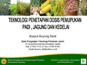 Busyra Buyung Saidi Balai Pengkajian Teknologi Pertanian Jambi