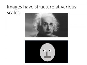 Images have structure at various scales Frequency Frequency