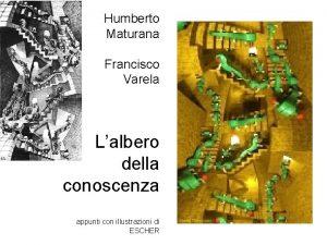 Humberto Maturana Francisco Varela Lalbero della conoscenza appunti