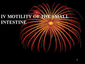 IV MOTILITY OF THE SMALL INTESTINE 1 Function