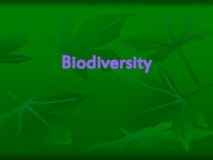 Biodiversity What is Biodiversity n The number and