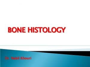 BONE HISTOLOGY Dr Nabil Khouri Review Hyaline Cartilage