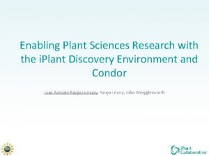 Enabling Plant Sciences Research with the i Plant