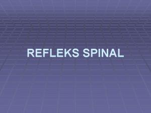 REFLEKS SPINAL Refleks Spinal Untuk mengerti fungsi Medula