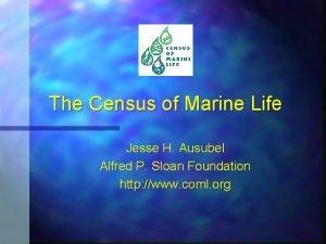 The Census of Marine Life Jesse H Ausubel