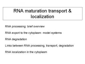 RNA maturation transport localization RNA processing brief overview