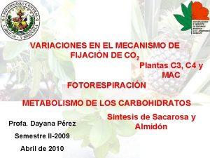 VARIACIONES EN EL MECANISMO DE FIJACIN DE CO