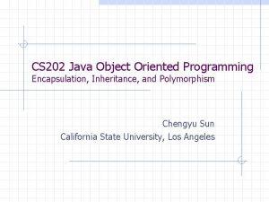 CS 202 Java Object Oriented Programming Encapsulation Inheritance