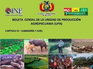 BOLETA CENSAL DE LA UNIDAD DE PRODUCCIN AGROPECUARIA