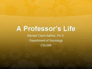 A Professors Life Marisol ClarkIbez Ph D Department