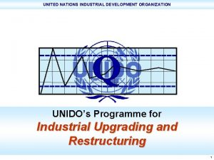 UNITED NATIONS INDUSTRIAL DEVELOPMENT ORGANIZATION UNIDOs Programme for