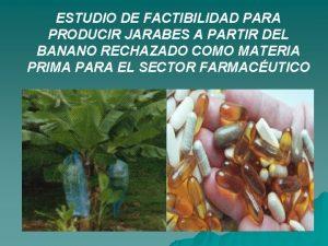 ESTUDIO DE FACTIBILIDAD PARA PRODUCIR JARABES A PARTIR