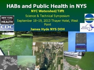 HABs and Public Health in NYS NYC WatershedTifft
