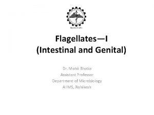 FlagellatesI Intestinal and Genital Dr Mohit Bhatia Assistant