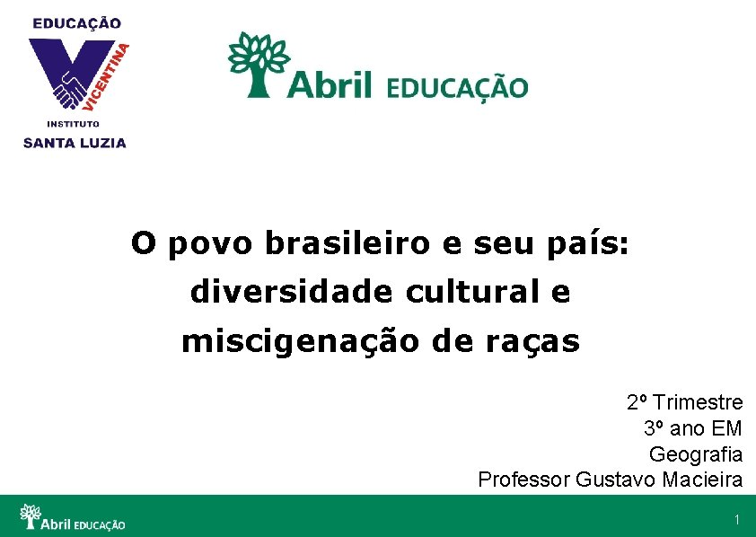 O povo brasileiro e seu pas diversidade cultural