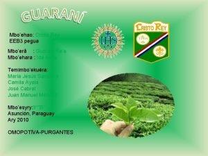 Mboehao Cristo Rey EEB 3 pegua Mboer Guarani