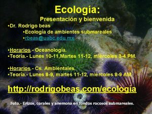 Ecologa Presentacin y bienvenida Dr Rodrigo beas Ecologa