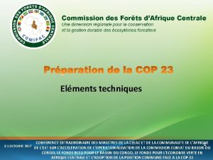 Elments techniques CONFERENCE EXTRAORDINAIRE DES MINISTRES DE LA