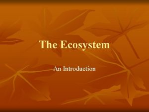 The Ecosystem An Introduction Ecosystem n n n