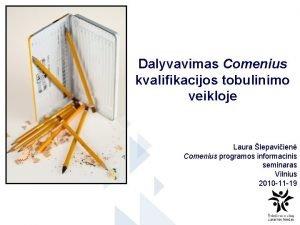 Dalyvavimas Comenius kvalifikacijos tobulinimo veikloje Laura lepaviien Comenius