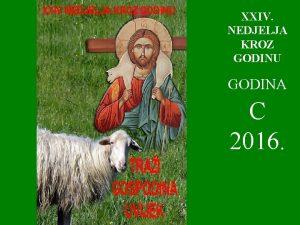 XXIV NEDJELJA KROZ GODINU GODINA C 2016 U