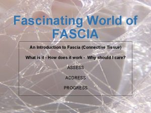 Fascinating World of FASCIA An Introduction to Fascia