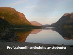 Professionell handledning av studenter Handledning En kontinuerlig terkoppling