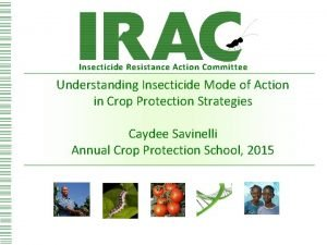 Insecticide Resistance Action Committee Understanding Insecticide Mode of