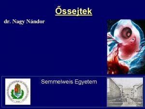 ssejtek dr Nagy Nndor Semmelweis Egyetem Generation of