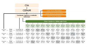 CIA CEPAM Comit Tcnico Metodolgico Comit Tcnico de