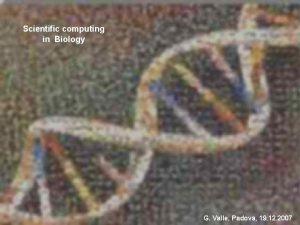 Scientific computing in Biology Scientific Computing G Valle