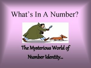 Whats In A Number The Mysterious World of