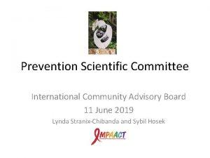 Prevention Scientific Committee International Community Advisory Board 11