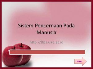 Sistem Pencernaan Pada Manusia http ltps uad ac