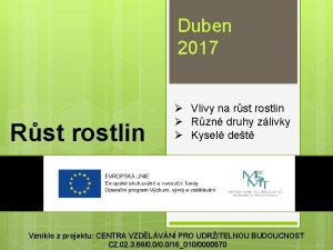 Duben 2017 Rst rostlin Vlivy na rst rostlin