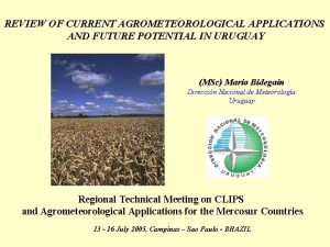 REVIEW OF CURRENT AGROMETEOROLOGICAL APPLICATIONS AND FUTURE POTENTIAL