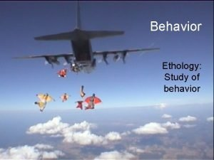 Behavior Ethology Study of behavior Outline Behavior is