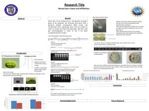 Research Title Researchers names and affiliations Glass Bead