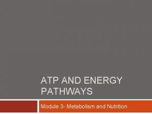 ATP AND ENERGY PATHWAYS Module 3 Metabolism and