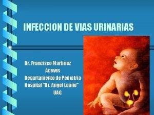 INFECCION DE VIAS URINARIAS Dr Francisco Martnez Aceves