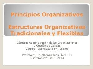 Principios Organizativos Estructuras Organizativas Tradicionales y Flexibles Ctedra