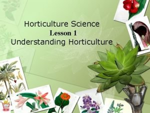 Horticulture Science Lesson 1 Understanding Horticulture What is